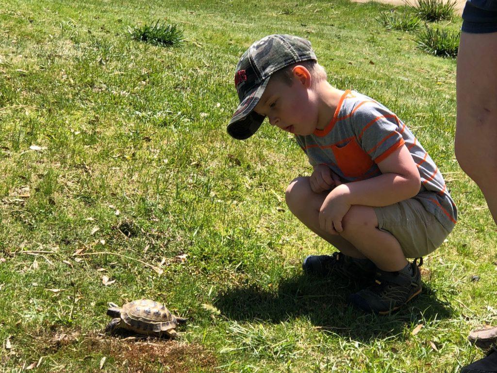 Outdoor Educational Activities