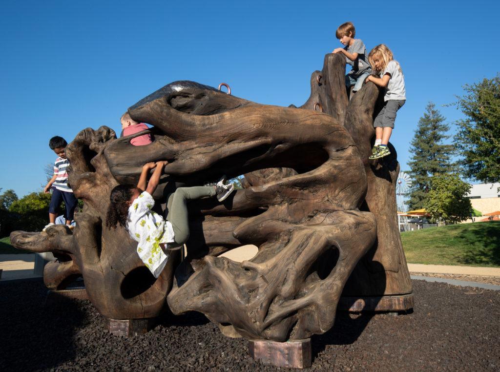 children playing on megaflora exhibit