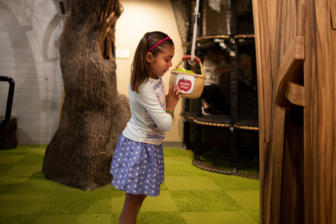 apple tree house and pulley system teaches children about pulleys