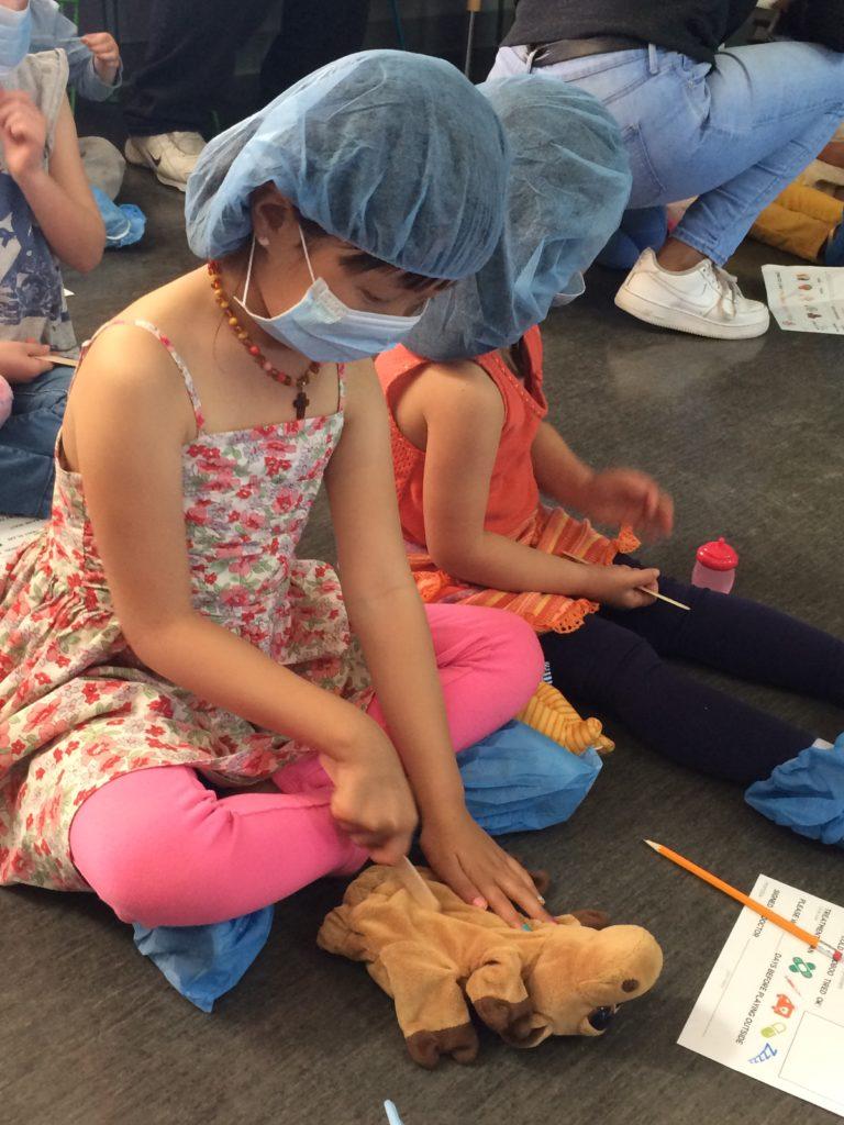 Educational Play in Santa Rosa