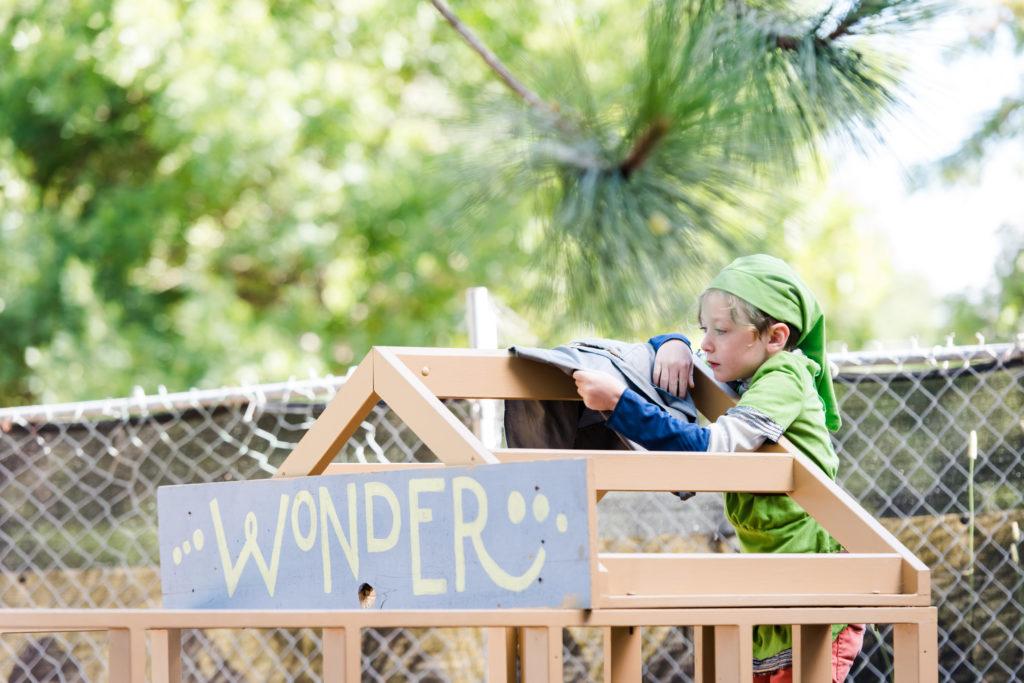 wonder camp