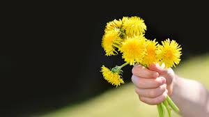 flower pounding art project