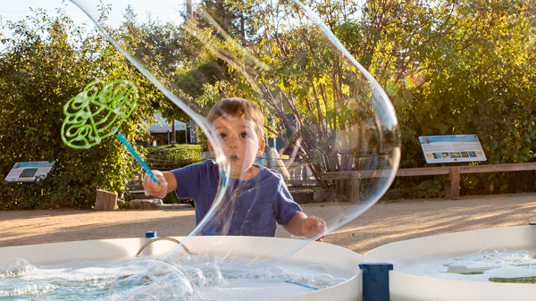 A little boy playing with bubbles and a bubble wand at The Sonoma County Children's Museum