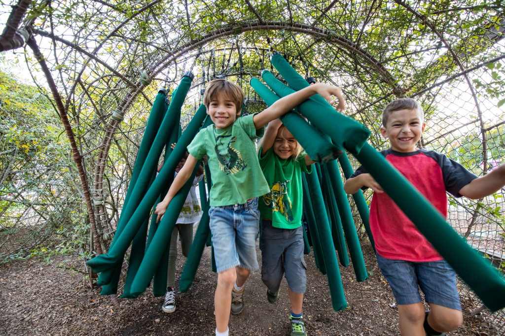 several children playing in the tube jungle under a canopy