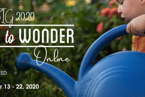 Time to Wonder 2020