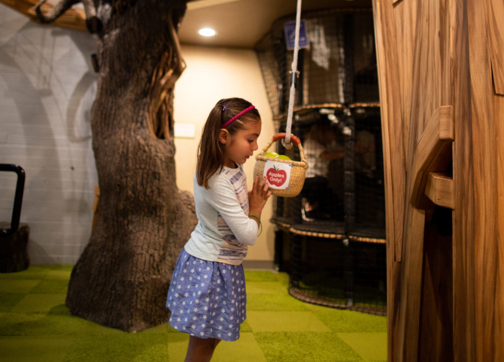child playing at apple tree indoor exhibit