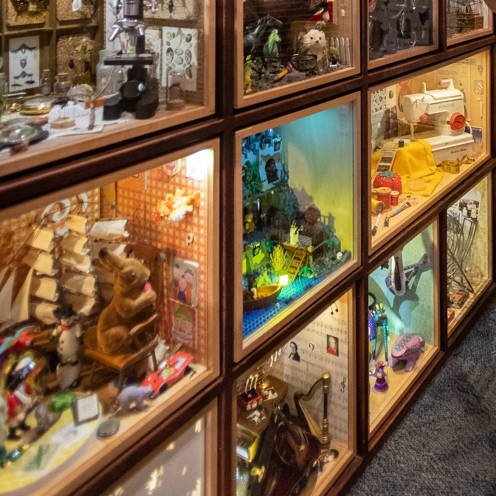 curiosity cabinets at childrens museum of sonoma county