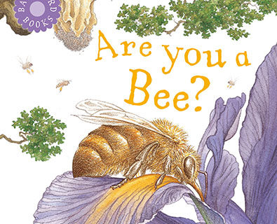 are you a bee book cover