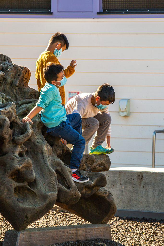 children playing on tree trunk exhibit